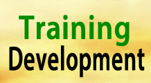 effectiveness of training and develoment Learning & development  measuring the effectiveness of measuring the effectiveness of training by evan watson, sharon bledsoe |  to overcome the obstacles of change and ambiguity.